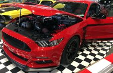 Mustangs in Abundance at Sydney MotorEx